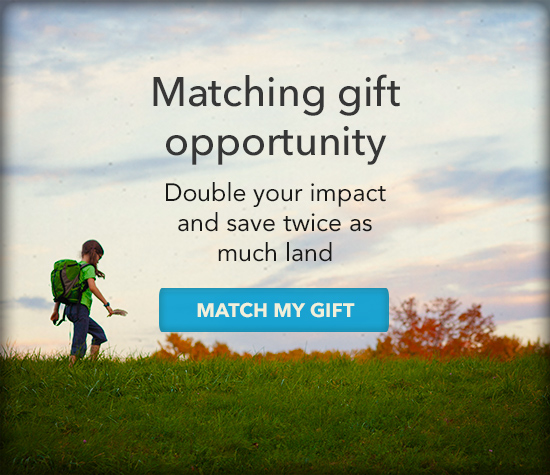 Matching gift opportunity