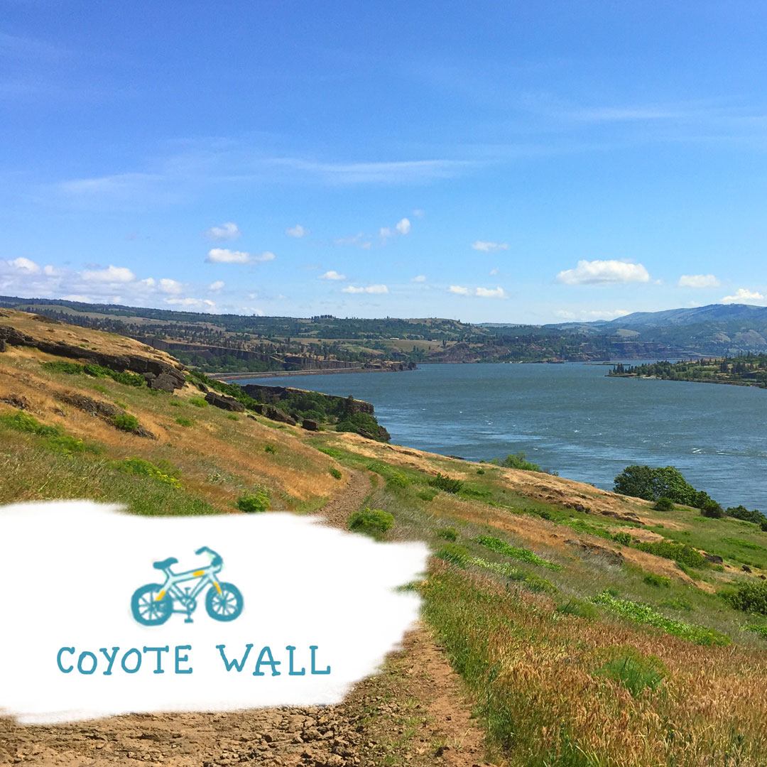 A trail along a green hillside beside the Columbia River