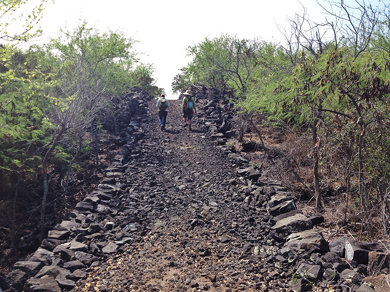 Two hikers walk along a rocky trail