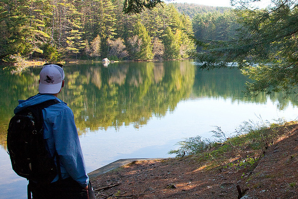A man stands next to a lake in a forest