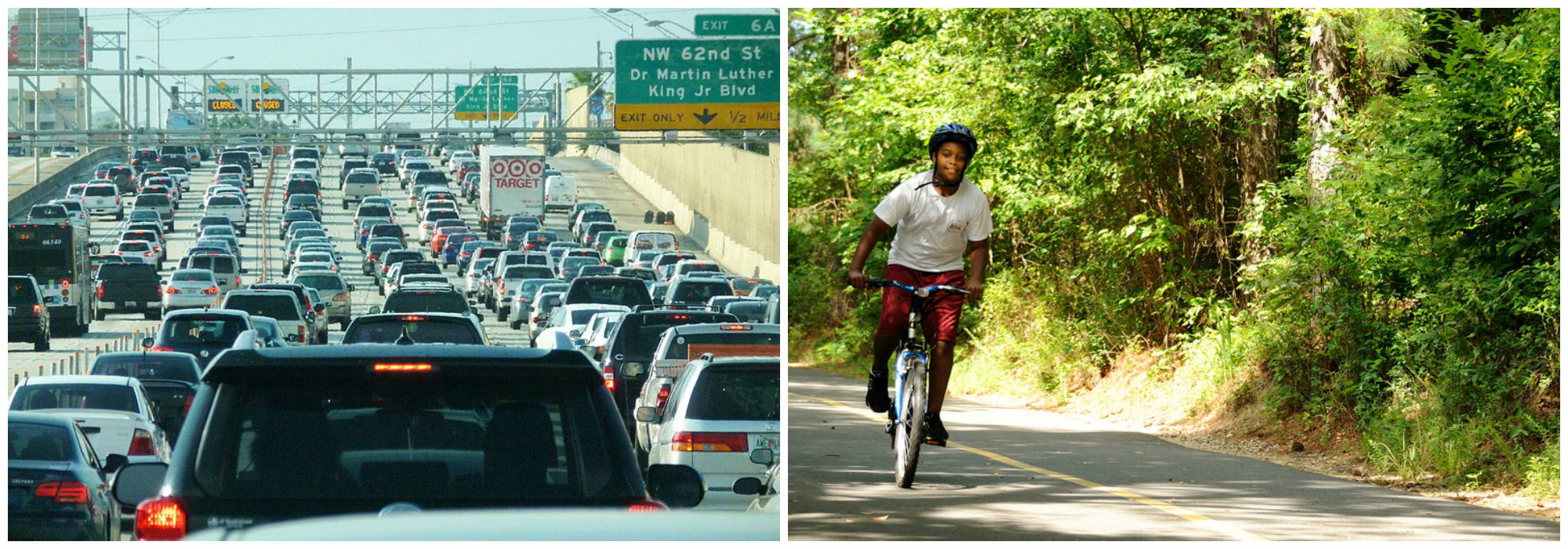 Traffic jam on left, shady bike path on right