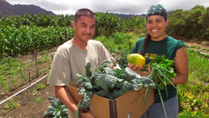 MA'O Farms in Waianae, HI