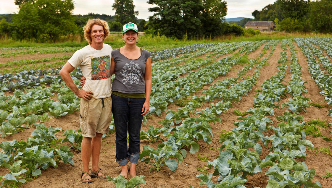 Northampton Community Farm, MA