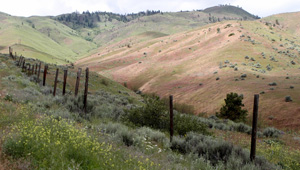 Broadview Heights, Wenatchee Foothills, WA