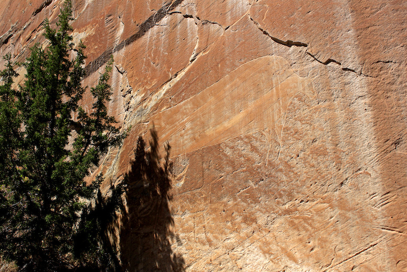 A bison petroglyph on a canyon wall at Dinosaur National Monument