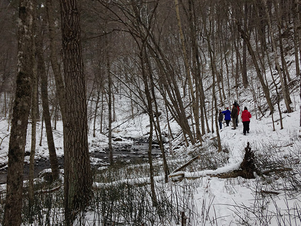 Photo of a group of people hiking around Lawrence Creek in the snow