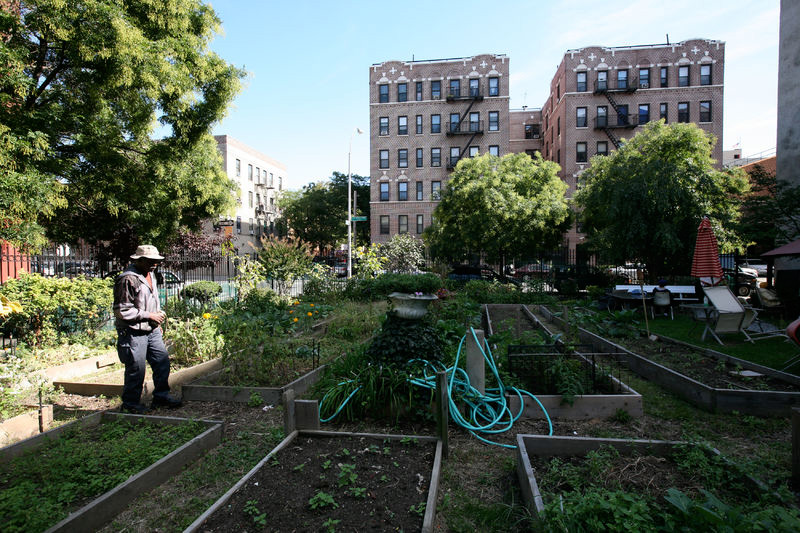Community Gardens The Trust For Public Land