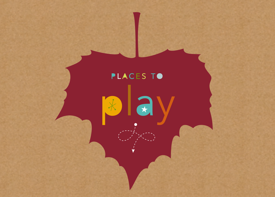 cover of Places to Play