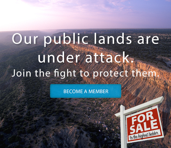 Join us in the fight to save public lands