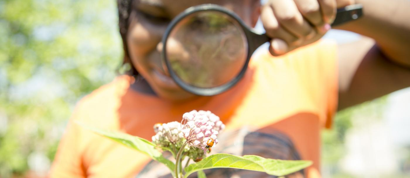 A young student uses a magnifying glass to observe the flowers at William Dick School in Pennsylvania.