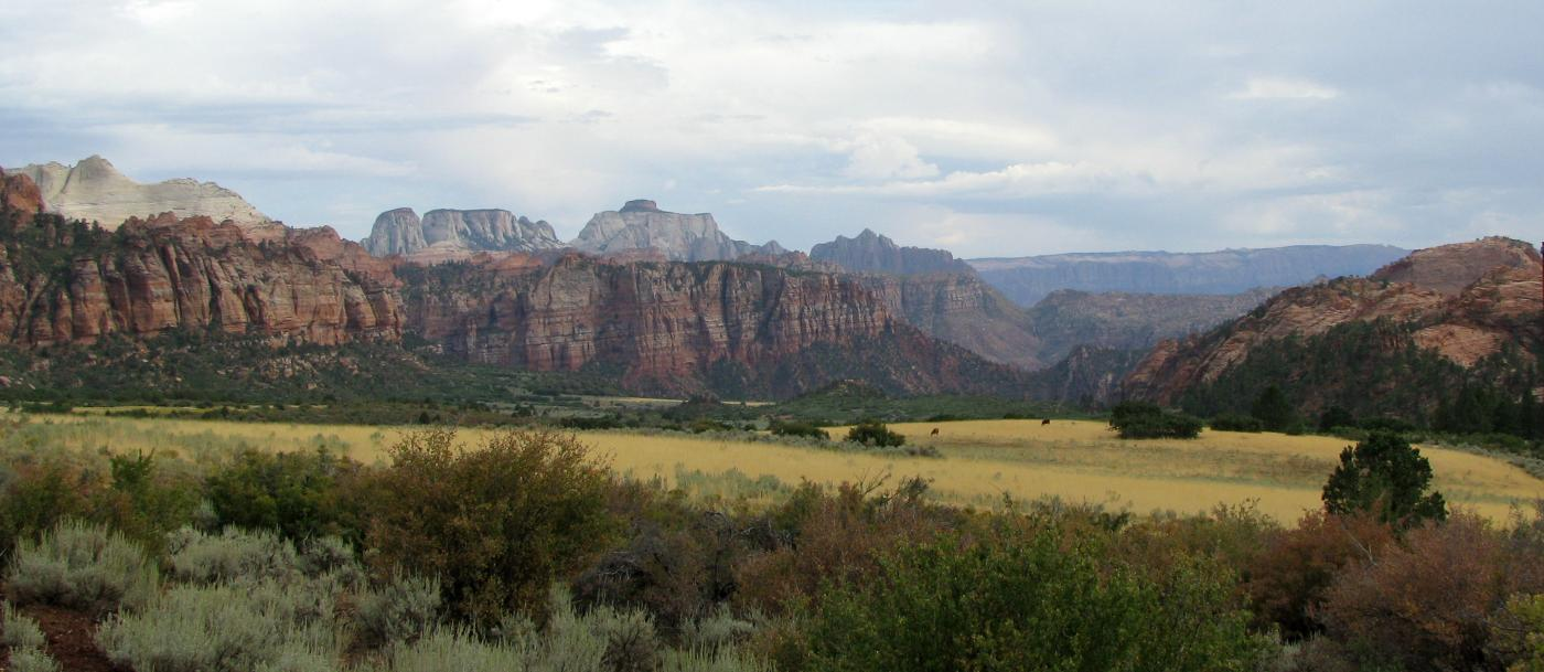 The Kolob Terrace section of Zion National Park, UT