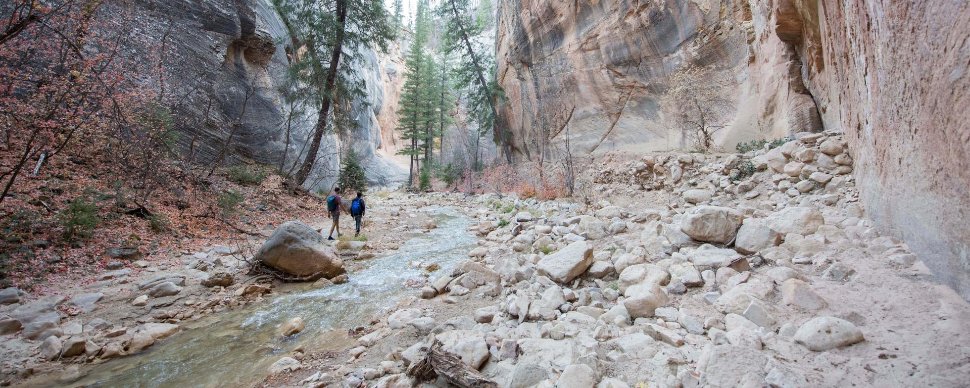 The Zion Narrows Trail is protected forever