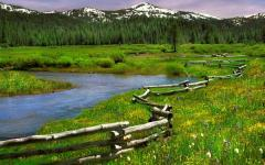 Springtime in Perrazo Meadows with snowy Sierra peaks in the distance.  Springtime in Perrazo Meadows with snowy Sierra peaks in the distance.