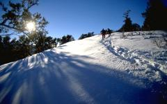 The 350-acre Summit Park property encompasses the forested hillsides surrounding the small town of Summit Park,  The 350-acre Summit Park property encompasses the forested hillsides surrounding the small town of Summit Park,