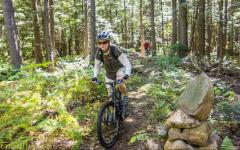 Mountain biker riding on the bingham forest trails at Bethel Community Forest  Mountain biker riding on the bingham forest trails at Bethel Community Forest