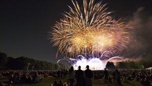 People gather in a public park to watch the fireworks