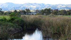 Ocean Meadows, Devereux slough, Santa Barbara, Gaviota Coast