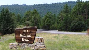 New Mexico National Forests