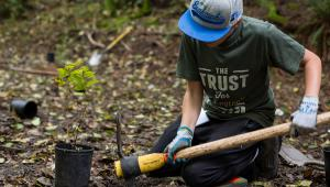Volunteer clean-up day on Squak Mountain