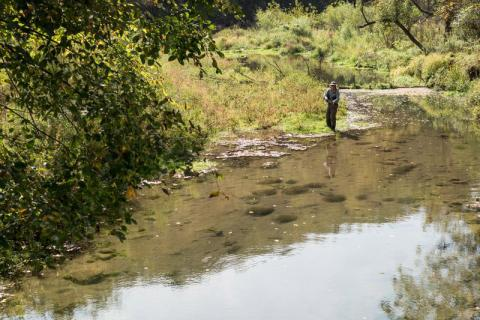 Picture of a person fishing in a river