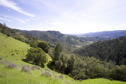 A view of Napa Valley from Oat Hill Mine Trail