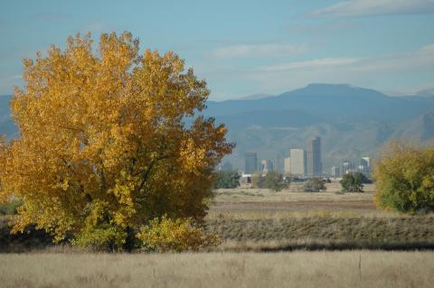 Denver skyline from Rocky Mountain Arsenal National Wildlife Refuge