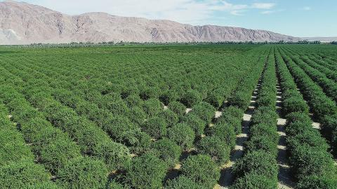 California's Imperial Valley