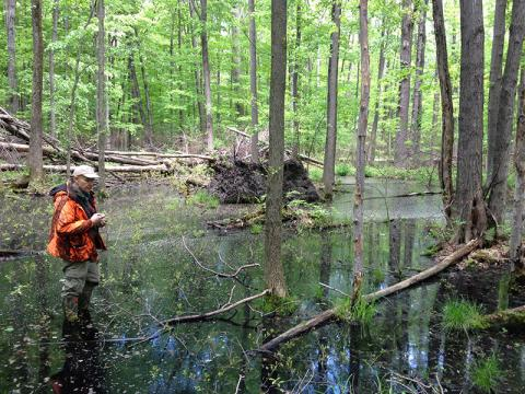 Photo of man in Geneva Swamp Preserve