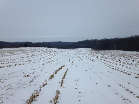 Photo of a snowy field