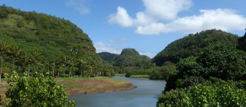 Waimea Valley, a tropical river flowing through green forest