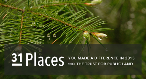 31 places you made a difference in 2015 with The Trust for Public Land