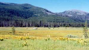 Sulphur Creek Ranch, Idaho