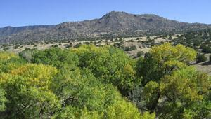 Tijeras Canyon, New Mexico