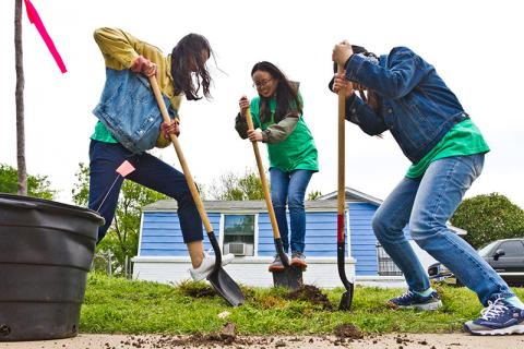 Photo of people with shovels  digging up earth