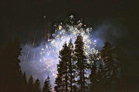Fireworks over a forest.