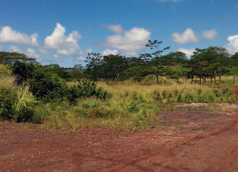 Whitmore North Agricultural Lands