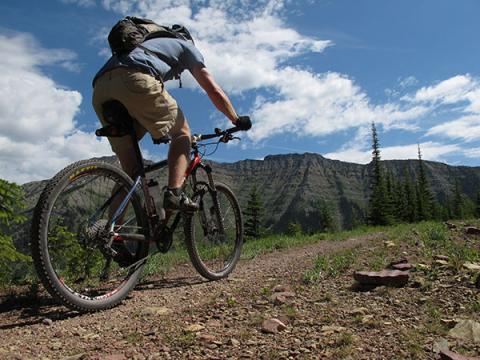 A mountain biker rides on a trail