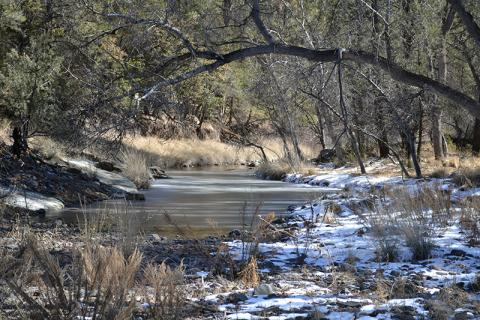 Bear Creek in the Gila National Forest, New Mexico