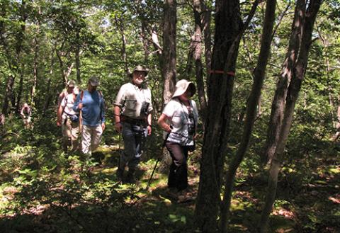 Hikers at Cranberry Mountain Wildlife Mangement Area