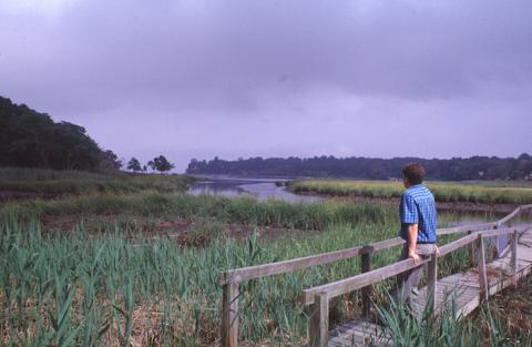 A man stands at Udall's Cove
