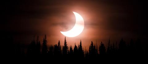 A partial solar eclipse with trees in the foreground