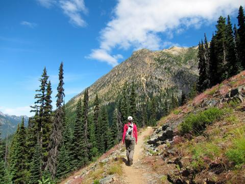 Hiker on Pacific Crest Trail south of Cutthroat Pass, Skagit, Washington
