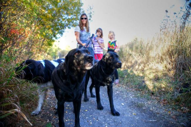 A family walks three dogs on a leash on a forested trail