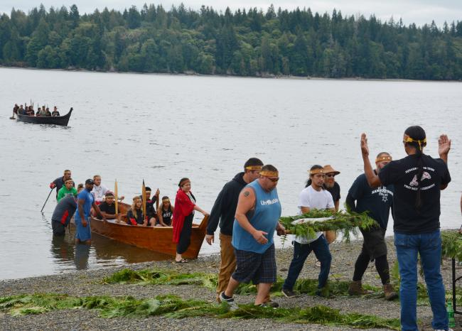 People land a canoe and bring a fish to shore on a bed of cedar boughs