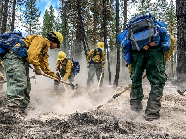 Wildland firefighters on the Two Four Two Fire