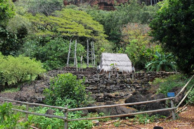 Puukua property directly behind Hale o Lono heiau