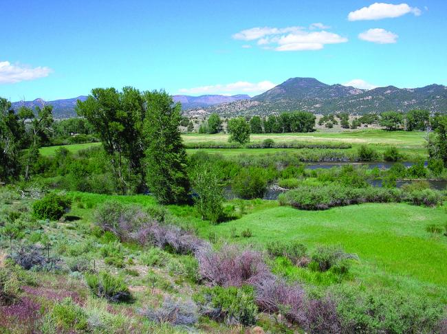 A river flows through a green field with mountains in the background