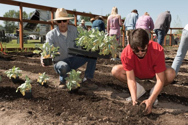 Two men plant starts in a garden at Story Mill Community Park