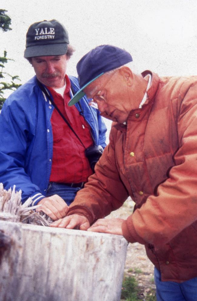Jim Ellis and a forester count rings on a tree stump