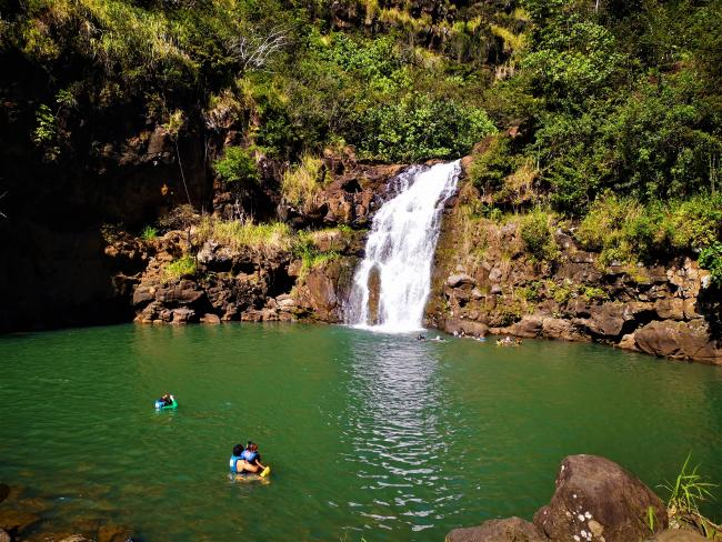 A waterfall in Waimea Valley with people swimming in the pool